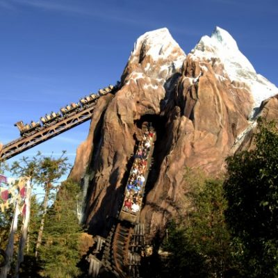 Top Attractions at Animal Kingdom
