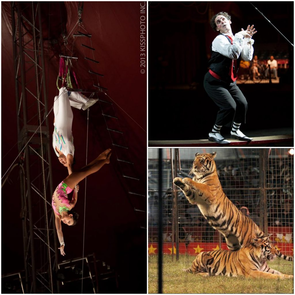 Shrine Circus Collage