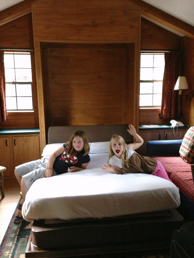 Big Family Or Craving Quiet At Walt Disney World The