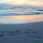 Remembering The Beach in Photos ~ Wordless Wednesday w/Linky
