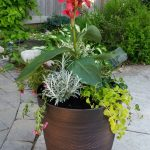 How to Make a Gorgeous Planter & a $50 Giveaway from @PresChoice #PCGarden