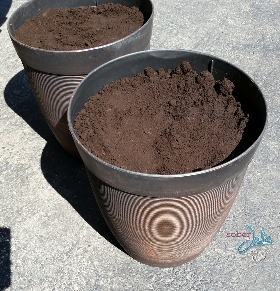 planting an urn or planter