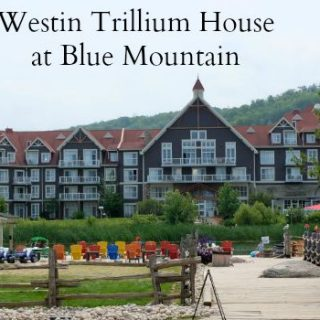 westin trillium house at blue mountin slider