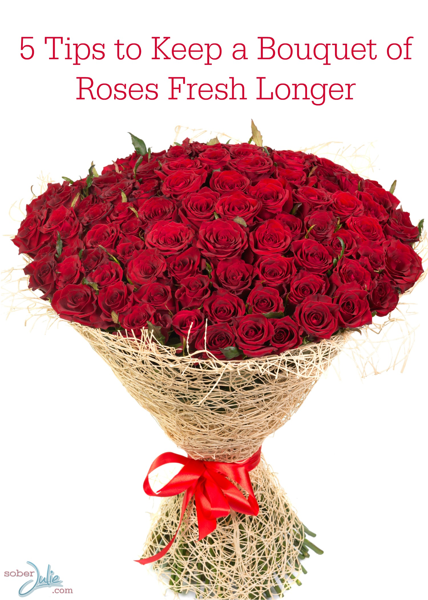 5 Tips to Keep a Bouquet of Roses Fresh Longer