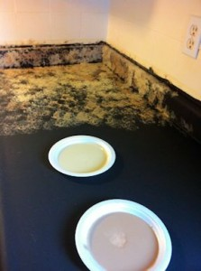 Step2 Giani Granit Counter top Paint