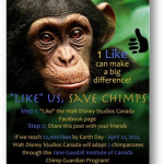 W1N 4 Passes to Disney CHIMPANZEE Toronto
