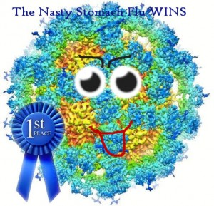 stomach-flu-wins