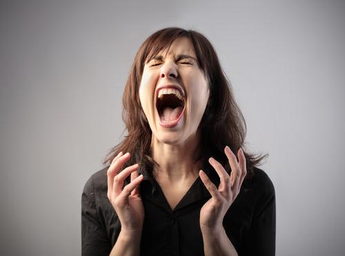 Mommy Bloggers Scream