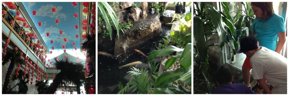 mandarin pond