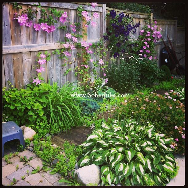 gardening is peaceful