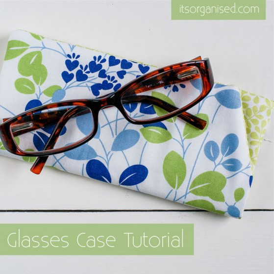 Glasses-Case1-559x559