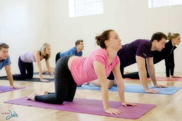 Cow Pose yoga pose wm