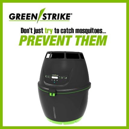 green strike