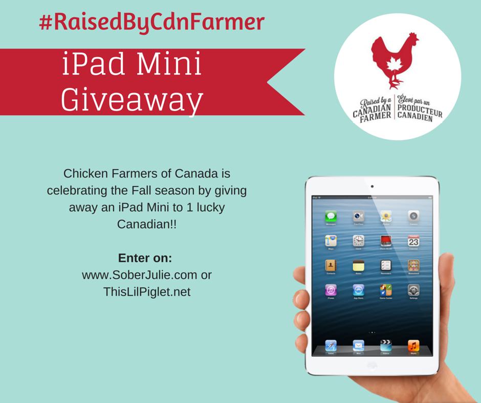 iPad Mini Giveaway!