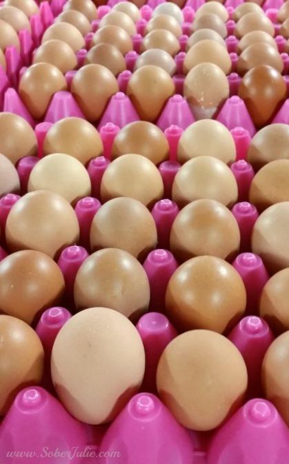 soberjulie eggs