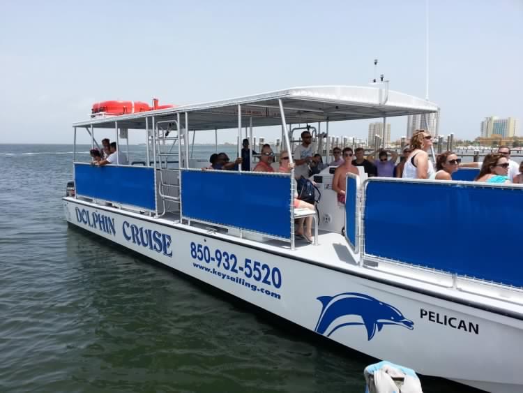 dolphin tour pensacola