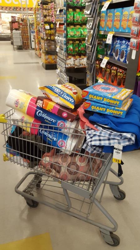 shopping cart giant tiger